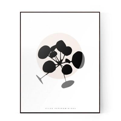 plants-01-600X600-WEB