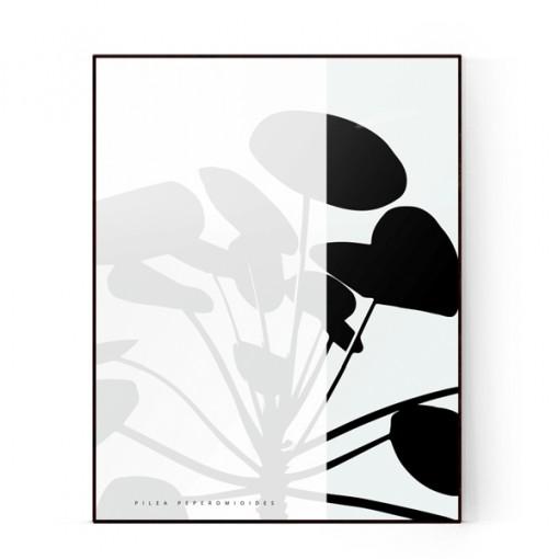 plants-03a-600X600-WEB