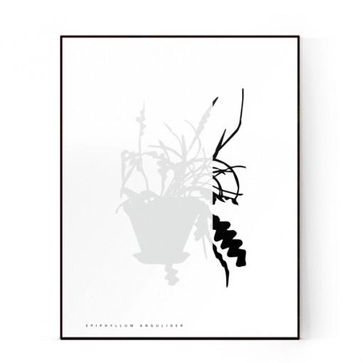 plants-10-600X600-WEB