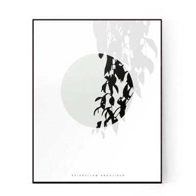 plants-15-600X600-WEB