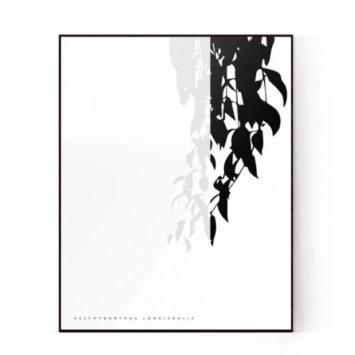 plants-15a-600X600-WEB